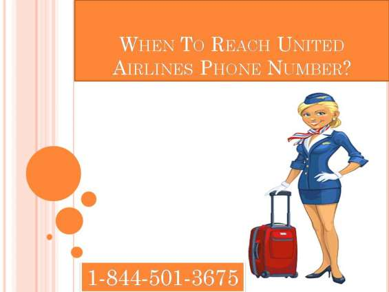 Approach united airlines phone number for bookings