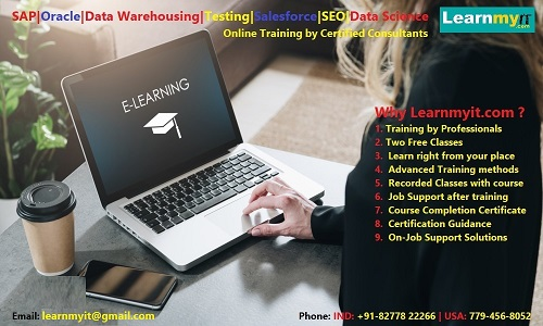 Sap, oracle, data warehousing, testing, big data, java, seo online training - learnmyit