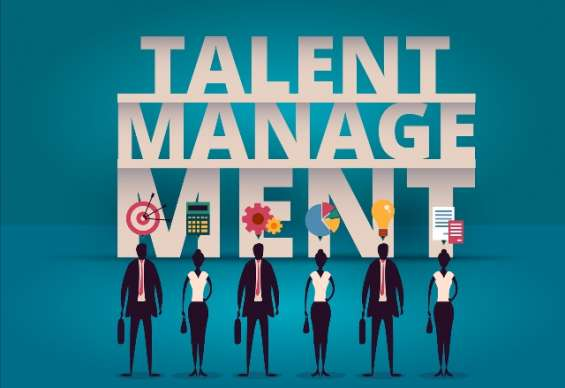 Need of talent assessment strategy usa