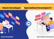 What would be the best for your business having a Stack Developer /Specialized Developer?