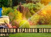 Irrigation repairing services in Tampa FL
