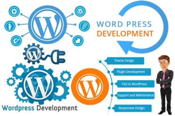 Hire wordpress developer from devbatch company in usa