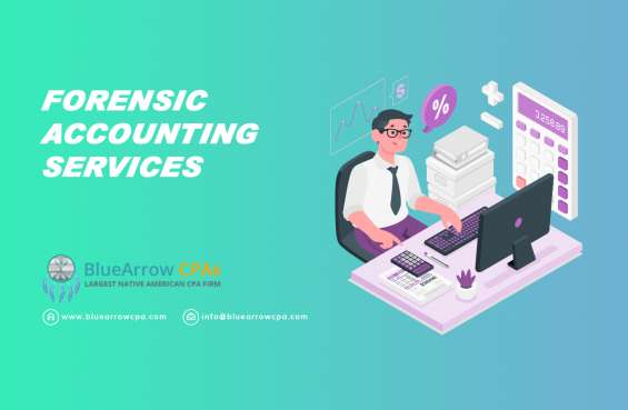Get top-rated forensic auditing services – bluearrowcpa